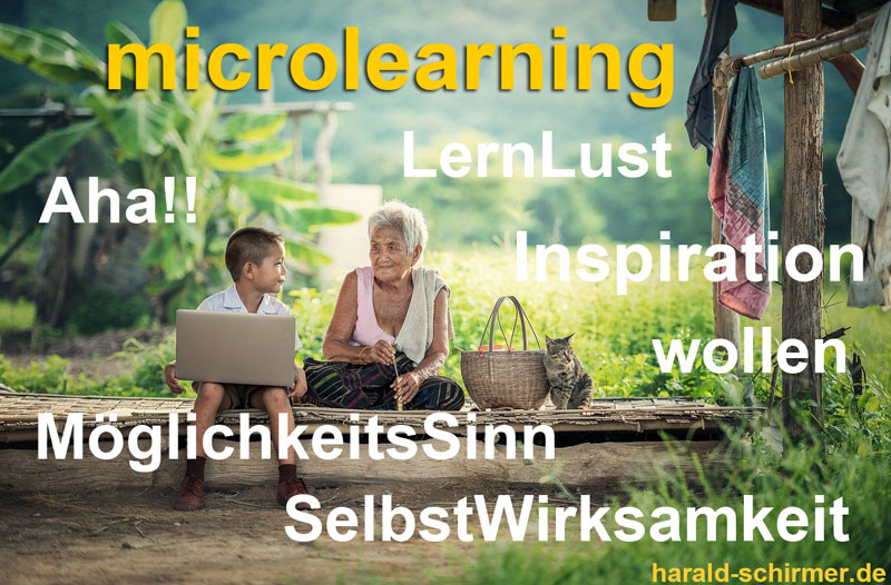 Microlearning by Harald Schirmer